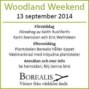 Woodland Weekend Borealis 13 september