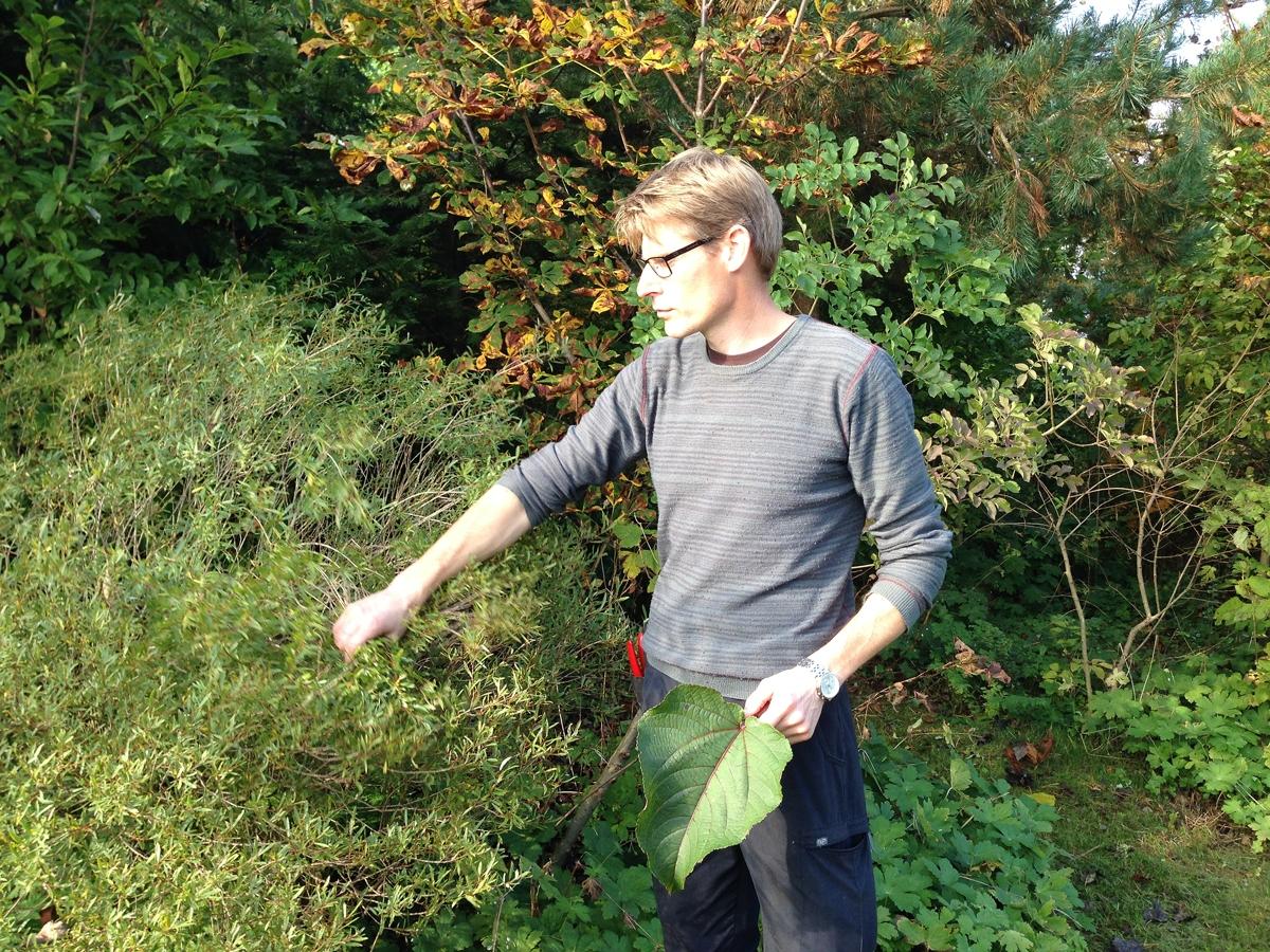 Arboretumvisning 11. Foto: Dan Abelin.