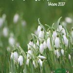 Medlemsbladet våren 2017